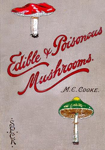 Alabama Edible Mushrooms http://www.micomania.rizoazul.com/edible%20poisonous%20mushrooms.html